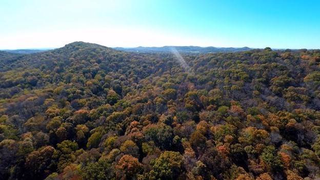 Land for Sale at Waterfall Road Brentwood, Tennessee 37027 United States