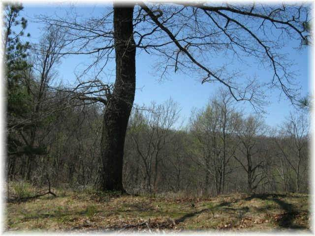13. Land for Sale at 8519 Mccrory Lane Nashville, Tennessee 37221 United States