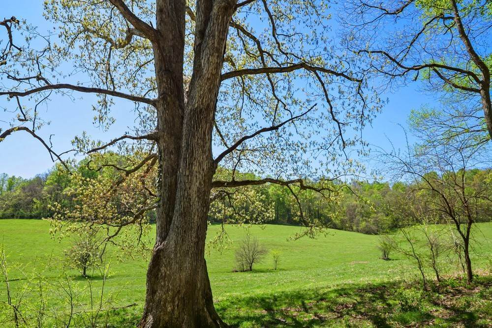 22. Farm for Sale at 1996 Old Hillsboro Road Franklin, Tennessee 37064 United States