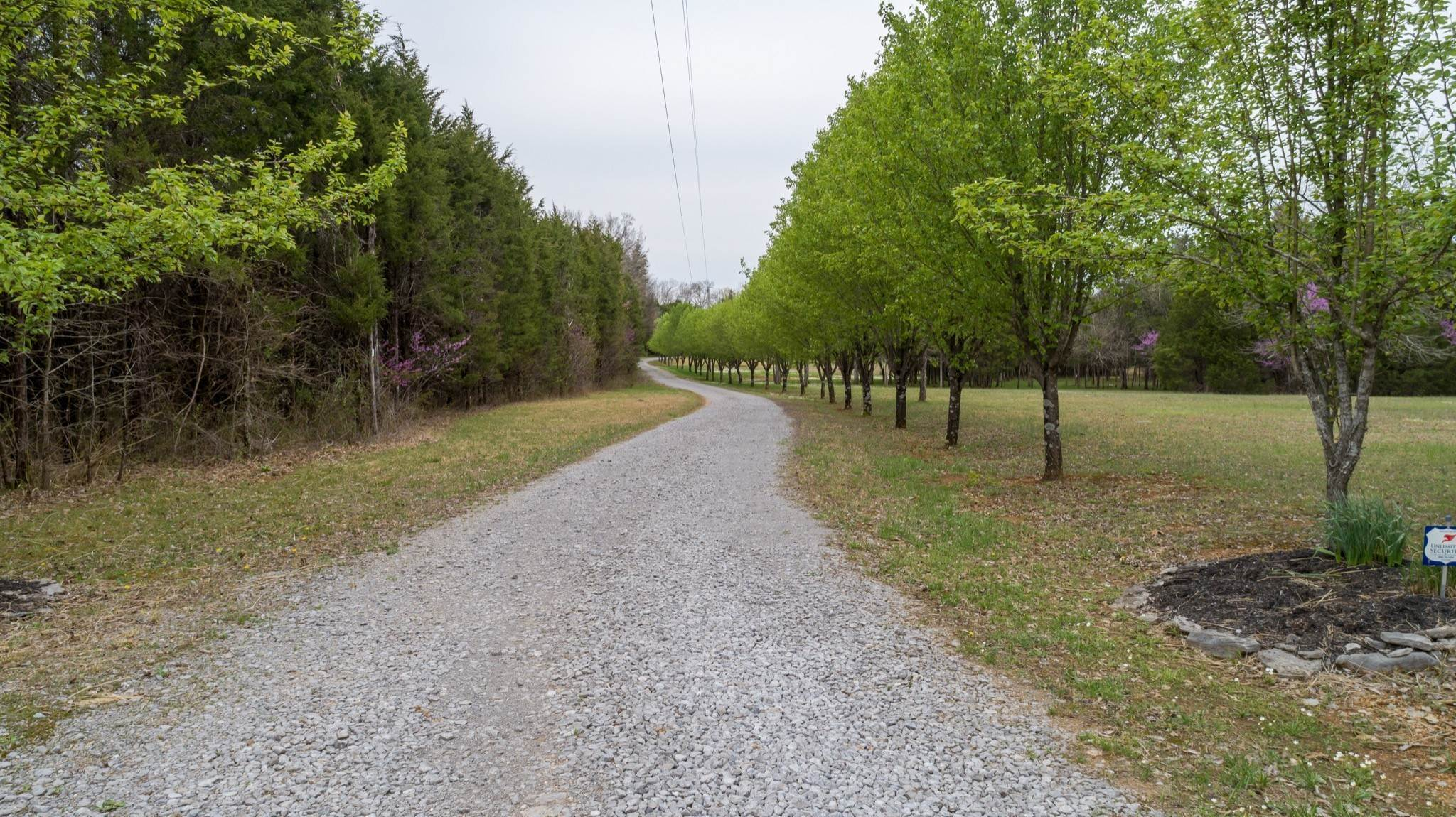 14. Land for Sale at 11836 Mona Road Murfreesboro, Tennessee 37129 United States