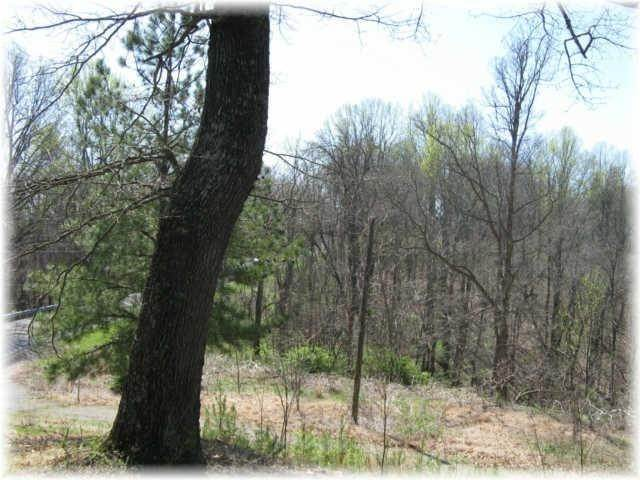 9. Land for Sale at 8519 Mccrory Lane Nashville, Tennessee 37221 United States