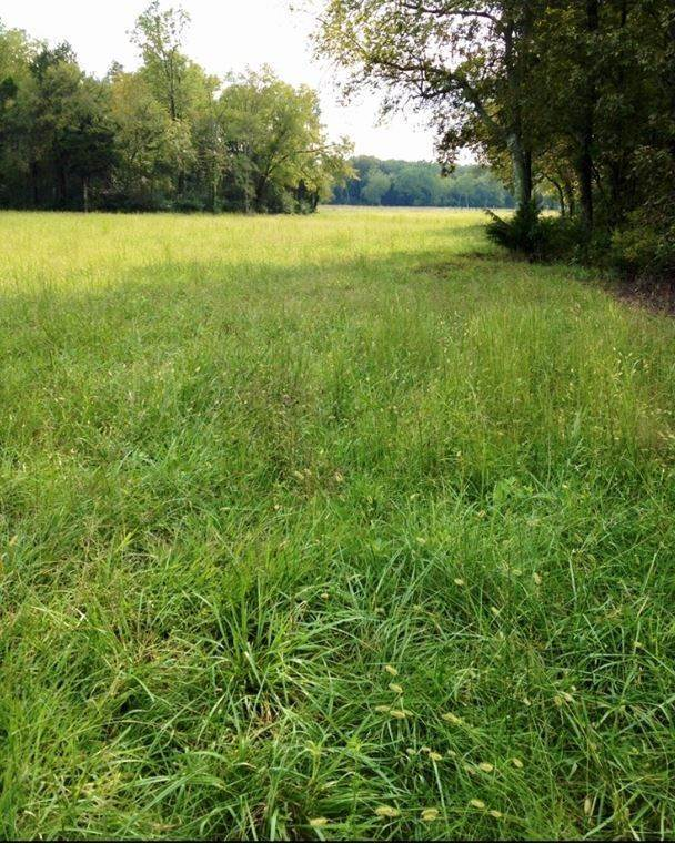 Land for Sale at Twin Oak Drive Murfreesboro, Tennessee 37130 United States