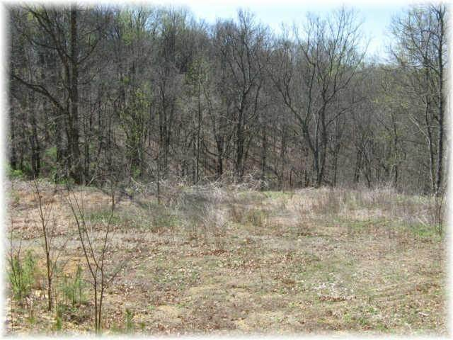 12. Land for Sale at 8519 Mccrory Lane Nashville, Tennessee 37221 United States