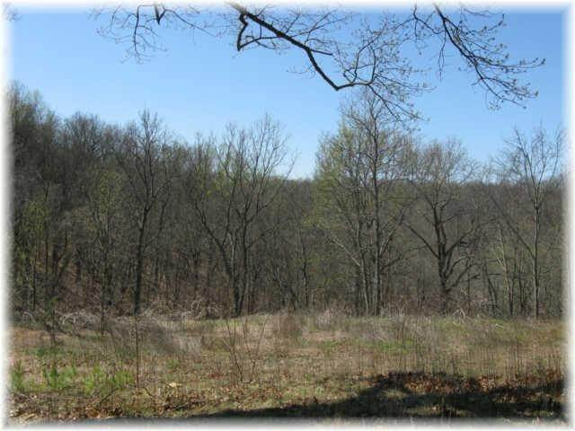 7. Land for Sale at 8519 Mccrory Lane Nashville, Tennessee 37221 United States