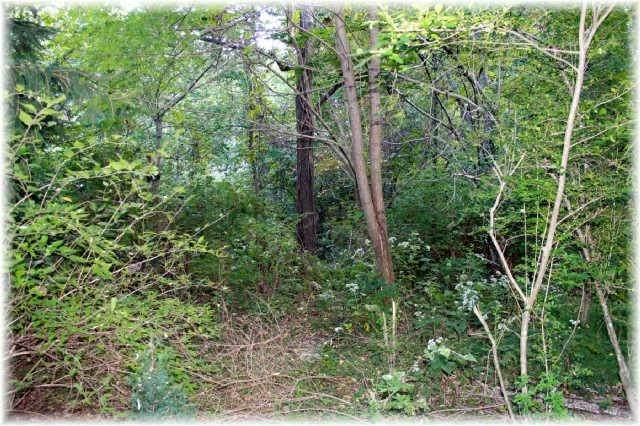 3. Land for Sale at 8519 Mccrory Lane Nashville, Tennessee 37221 United States