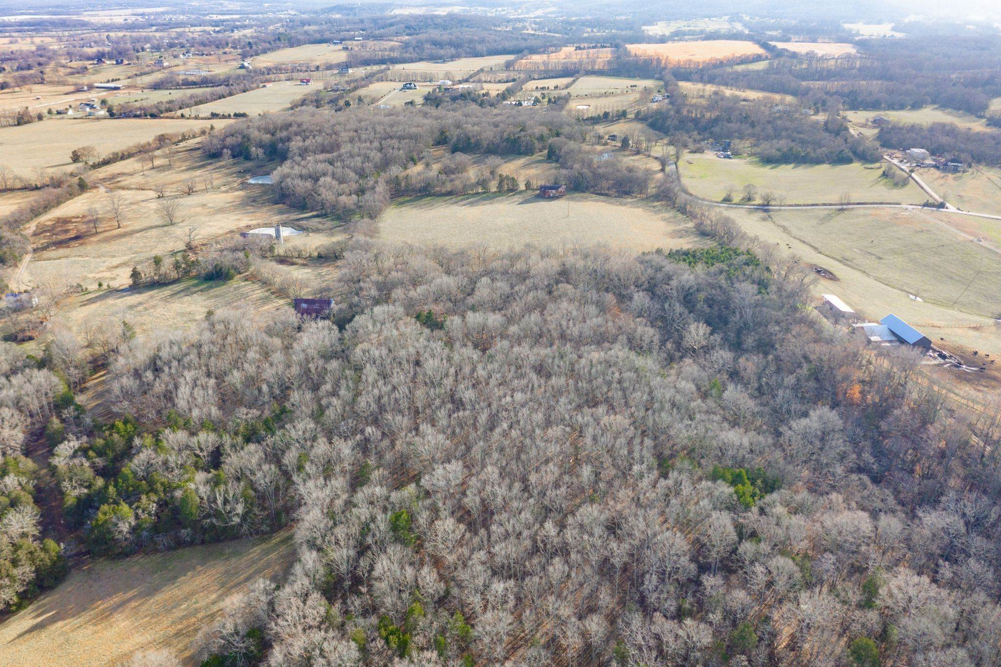 Farm for Sale at Webb Road Eagleville, Tennessee 37060 United States