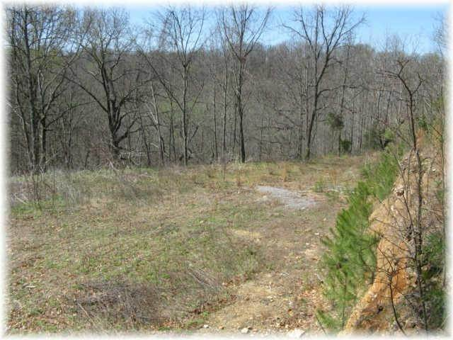 11. Land for Sale at 8519 Mccrory Lane Nashville, Tennessee 37221 United States