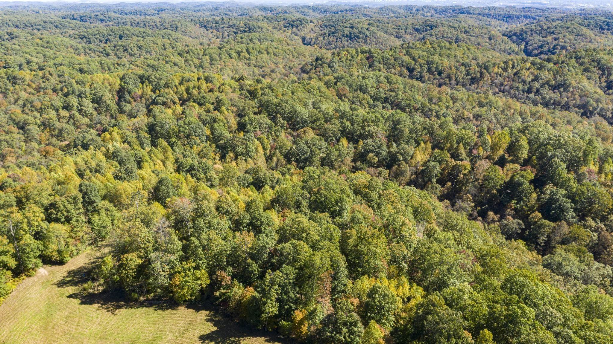 Land for Sale at Bull Run Road Ashland City, Tennessee 37015 United States