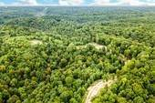 Land for Sale at Clay Lick Road Whites Creek, Tennessee 37189 United States