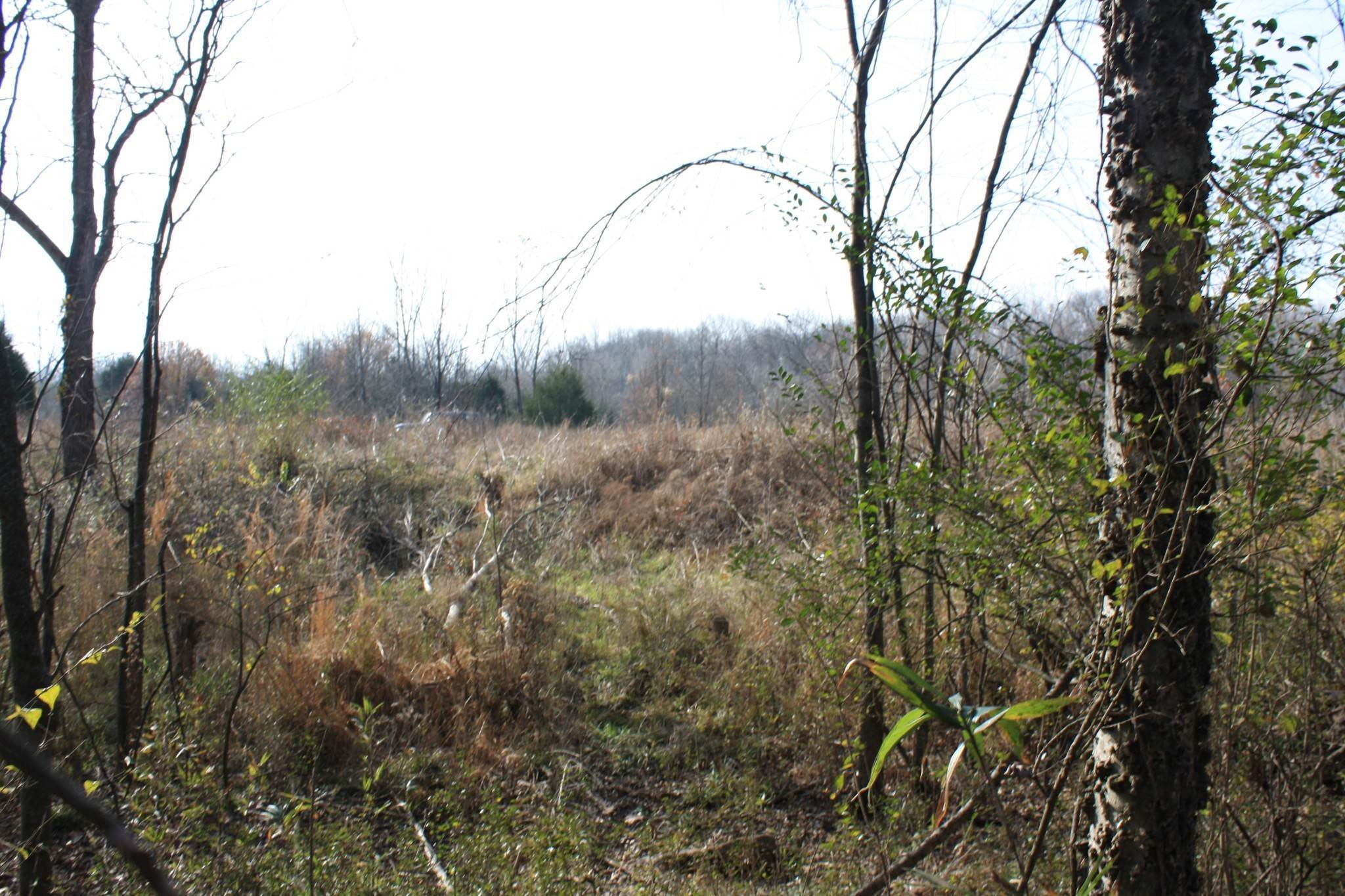 Land for Sale at Pawnee Trail Madison, Tennessee 37115 United States