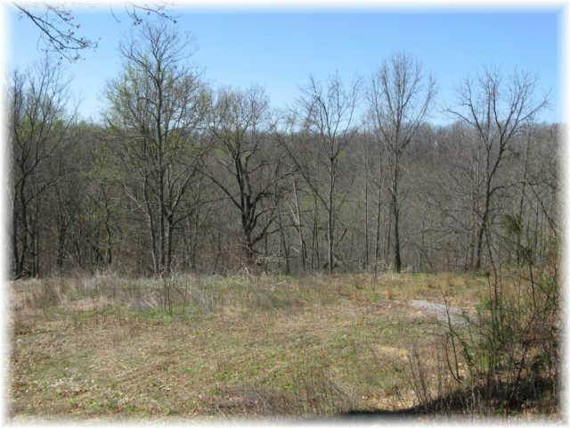 8. Land for Sale at 8519 Mccrory Lane Nashville, Tennessee 37221 United States