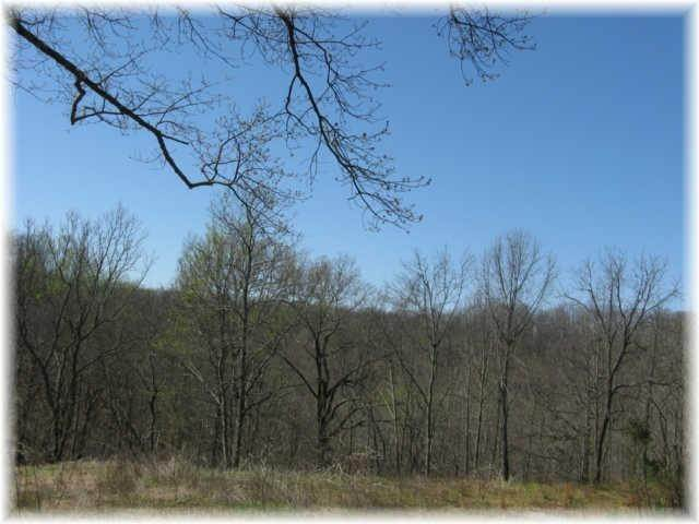 10. Land for Sale at 8519 Mccrory Lane Nashville, Tennessee 37221 United States