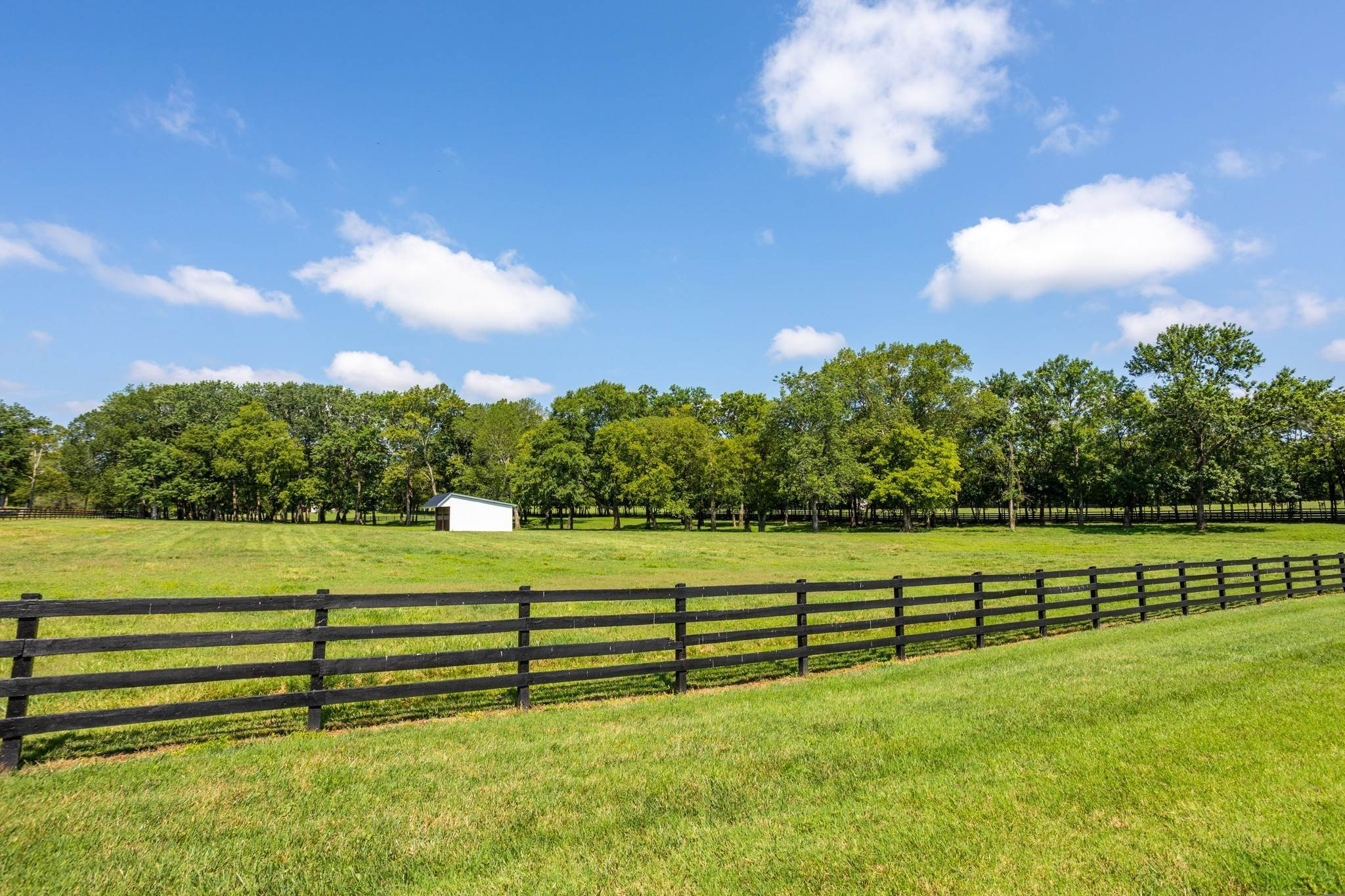 47. Farm for Sale at 1500 Moran Road Franklin, Tennessee 37069 United States