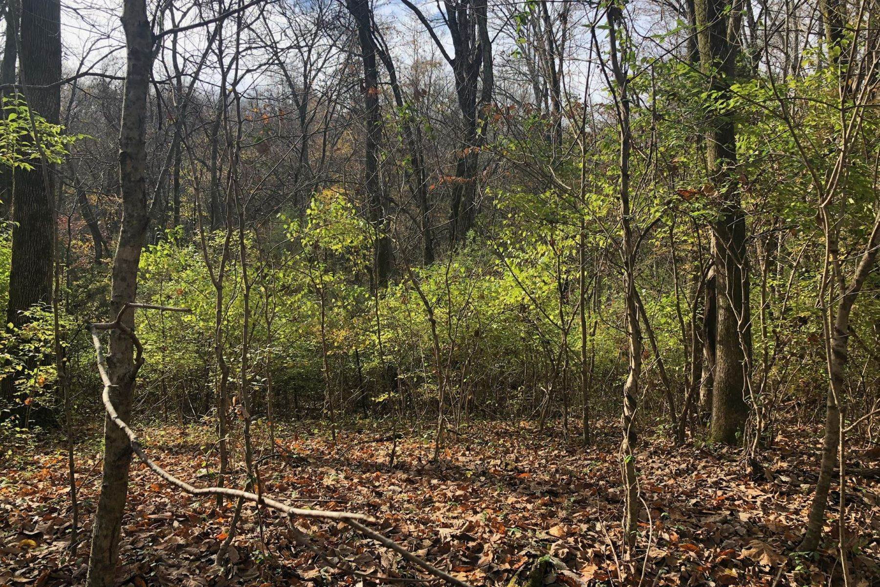 Land for Sale at 14.66 Acres in Davidson County 0 Collins Road Nashville, Tennessee 37221 United States