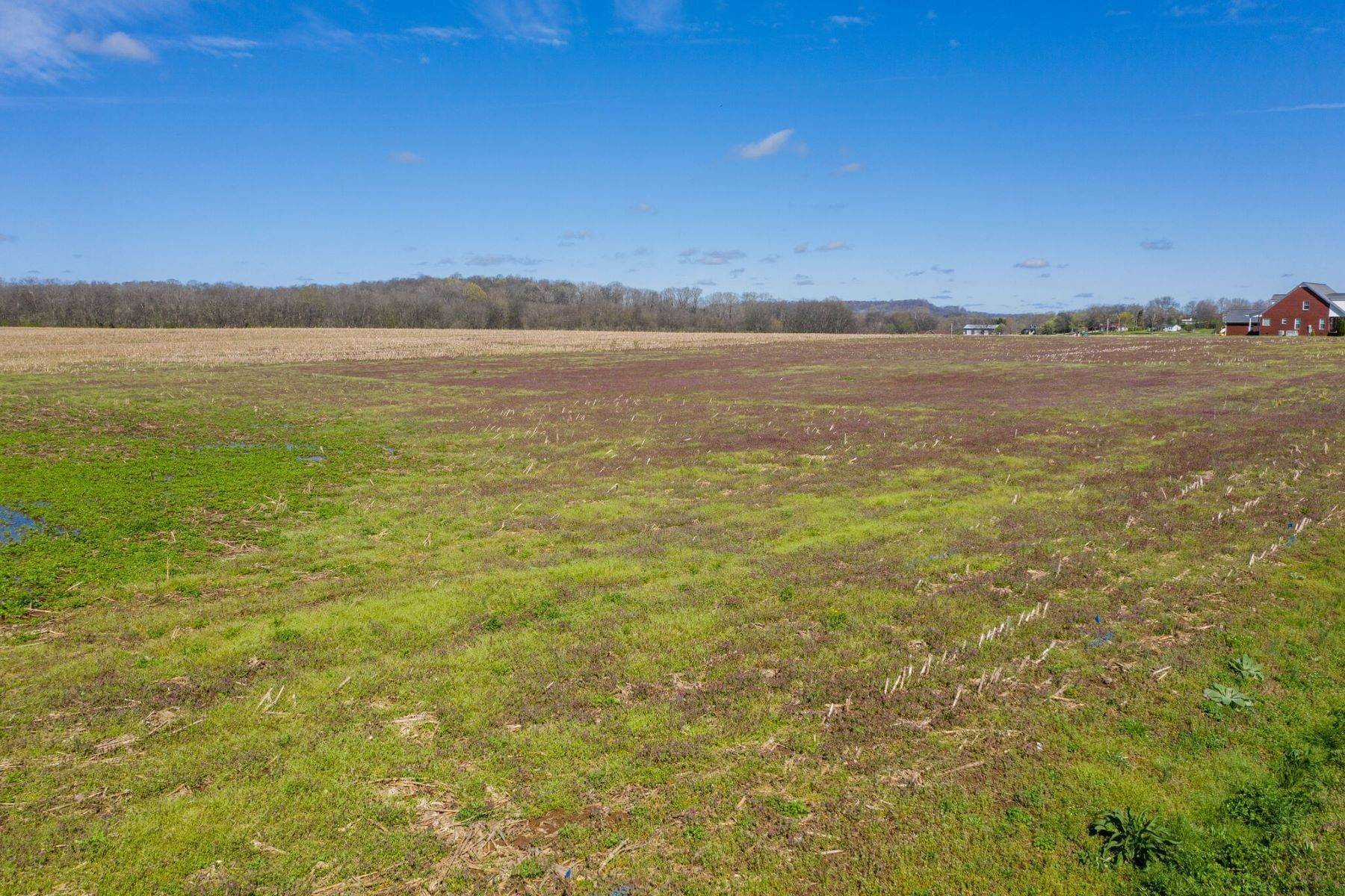 Land for Sale at 0 S Cross Bridges Rd, Mount Pleasant, Tn, 38474 0 S Cross Bridges Rd, Lot 1 Mount Pleasant, Tennessee 38474 United States